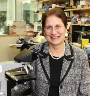 Dr. Rita Kandel