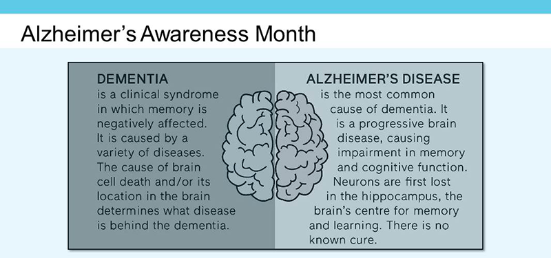 What's the difference between Alzheimer's disease and dementia?