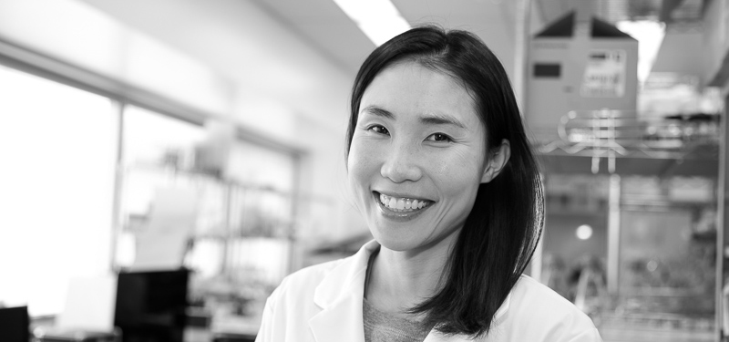 Dr. Ji-Young Youn, Postdoctoral Fellow at the Lunenfeld-Tanenbaum Research Institute