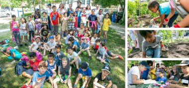 photo collage featuring students, staff planting