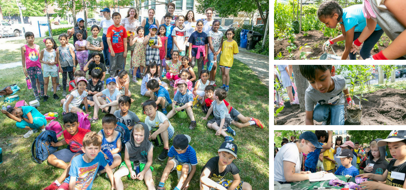 Green Committee and elementary students bring life to local park