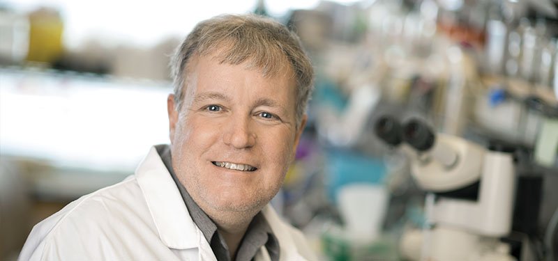 Dr. Jeff Wrana and team follow a gut feeling and discover a new type of stem cell