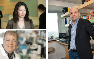 Sinai researchers weigh in: What can we hope to achieve in cancer research?