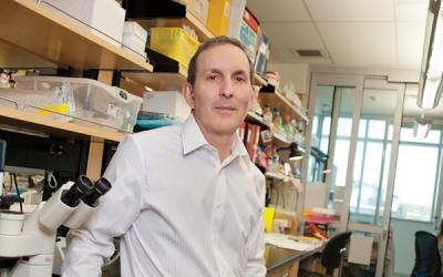 (News Release) Dr. Daniel Drucker honoured with prestigious international award for diabetes research