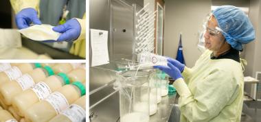 milk bank processing images