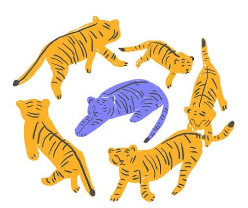 Pregnancy loss tigers