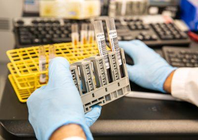 Specimens in test tubes