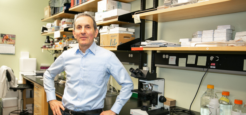 (News Release) Dr. Daniel Drucker honoured with prestigious international award for diabetes research