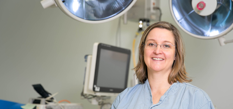 Dr. Erin Kennedy named as Head of the Division of General Surgery