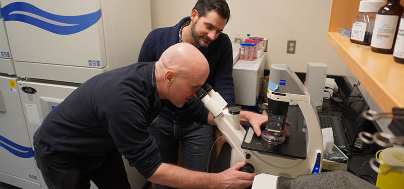 Sinai Health researchers awarded grant to fight vision loss