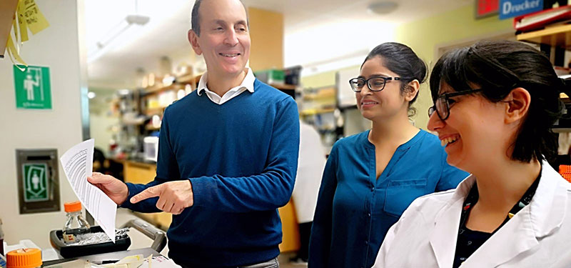 Dr. Daniel Drucker honoured with 2020 Baxter Prize for diabetes impact