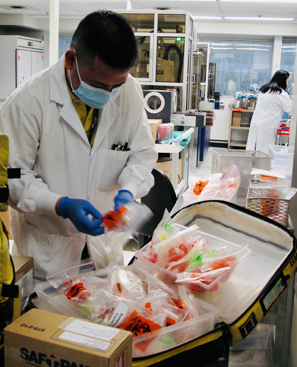 An employee in a lab wearing a mask, labcoat and gloves, standing sorting through bagged samples the lab has received.