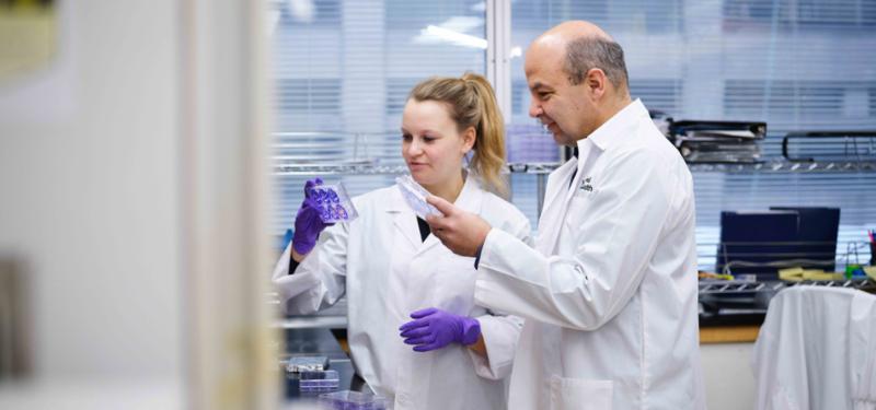 LTRI scientist Daniel Durocher celebrated as pioneer in precision oncology medicine